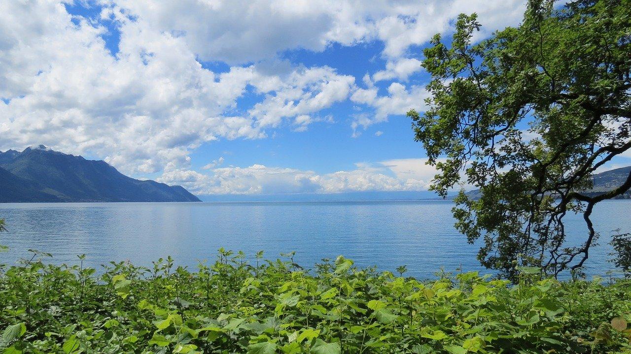 paddle calme lac léman